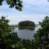 Mashomack Wetlands