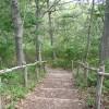 Mashomack Hiking Trail